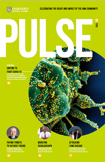 Cover of Fall 2020 Pulse.