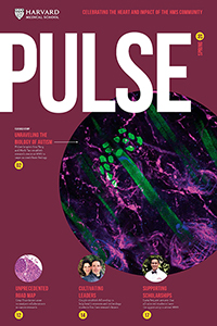Pulse 2019 Fall cover