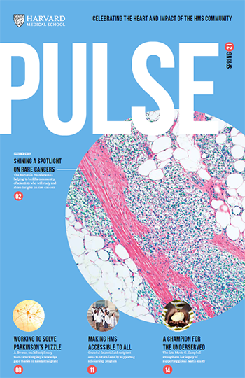 Cover of Spring 2021 Pulse.