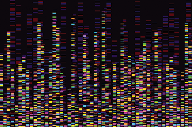 colored gene profile map