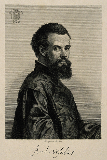 The sixteenth-century anatomist Andreas Vesalius in an 1841 engraving.
