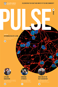Cover of spring 2019 issue of Pulse.