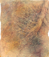 Laura Ferguson, <em>Bronchial Tree (gold  mezzo version)</em>, Oils, bronze powder, charcoal, and pastel pencil on paper, 9.75 x 8 in