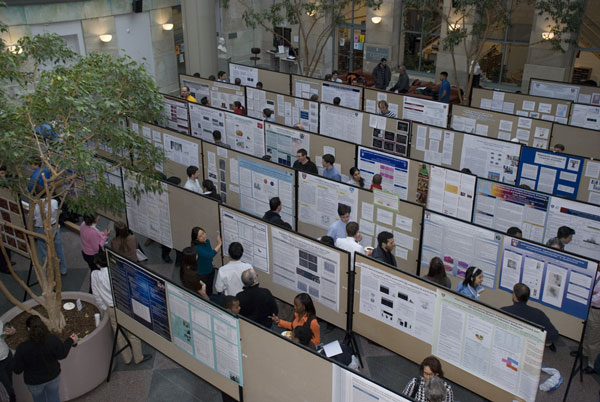More than 100 Harvard medical students presented their research in the poster session at the longstanding and venerated forum for celebrating student research. Photo by Jan Reiss.