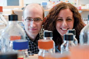 Alexander Loewer (left) and Galit Lahav show a suprising role for the protein p53 in healthy cells. Photo by Joshua Touster.