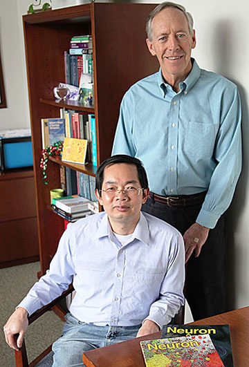 Dennis Selkoe (standing) and Assistant Professor Shaomin Li found that exposing the brain to novel activities in particular provided greater protection against Alzheimer's disease than did just aerobic exercise.  Photo courtesy of Brigham and Women's Hospital
