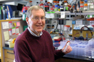 David Knipe, HMS Higgins Professor of Microbiology and Molecular Genetics, led development of an experimental genital herpes vaccine now in clinical trials. Image: Knipe Lab