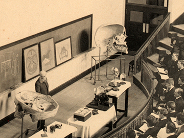 Thomas Dwight lectures to medical students in 1906 using two skull models. The one at right has just been donated to the Warren Anatomical Museum, while the one at left is still used today in the teaching of anatomy. Image: Photograph Collection, Harvard Medical Library in the Francis A. Countway Library of Medicine