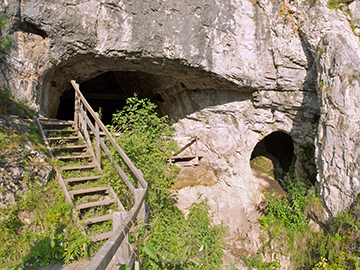 View of the cave in Siberia where the Neanderthal was found whose DNA was analyzed in the current study. Image: Bence Viola
