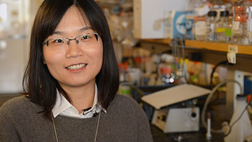 Postdoctoral researcher Wenjun Xiong, along with HMS genetics professor Connie Cepko, talk about developing a gene therapy to stave off blindness.