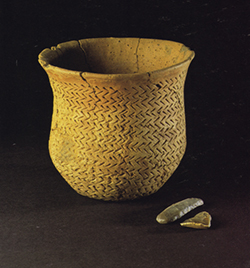 A 4,500-year-old Beaker pot from Newmill, Scotland. Image courtesy Alison Sheridan