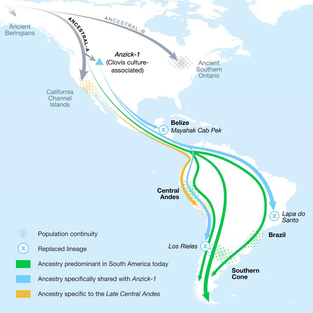 Illustrated map shows ancient population movement between North and South America, reconstructed from genetic analysis.