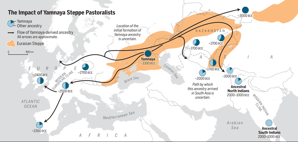 Illustrated map of Europe, Central Asia and South Asia showing estimated migration patterns and genetic contributions of steppe pastoralists