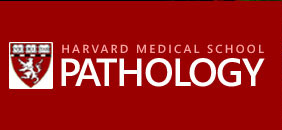 pathology logo
