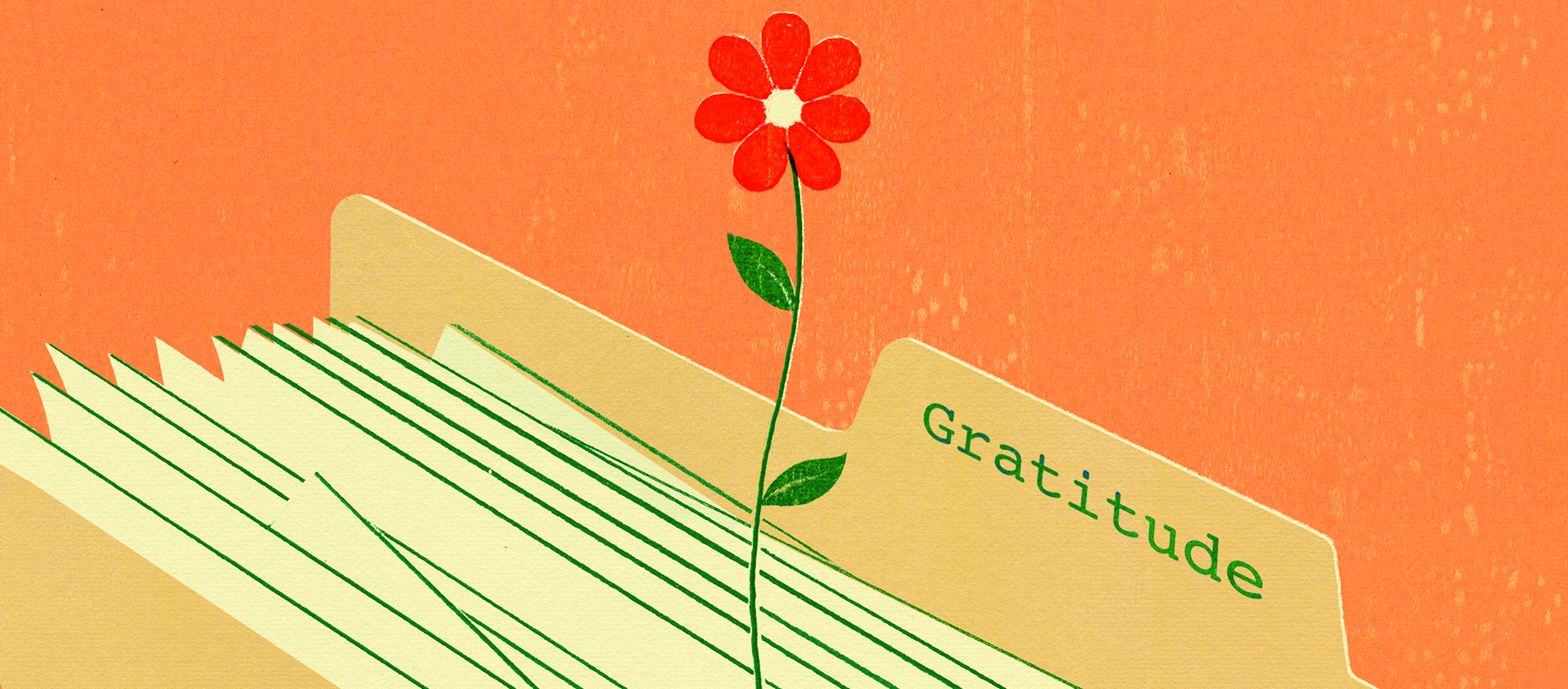 illustration of a manila folder with paper sheaves in a flower growing out