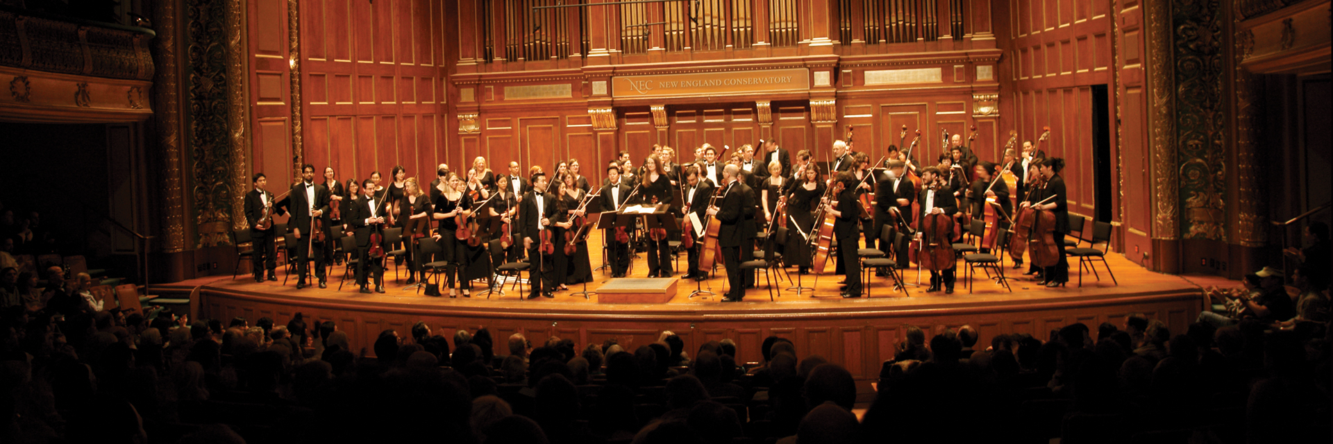 Longwood Symphony Orchestra during a performance