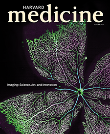 cover of Autumn 2018 issue