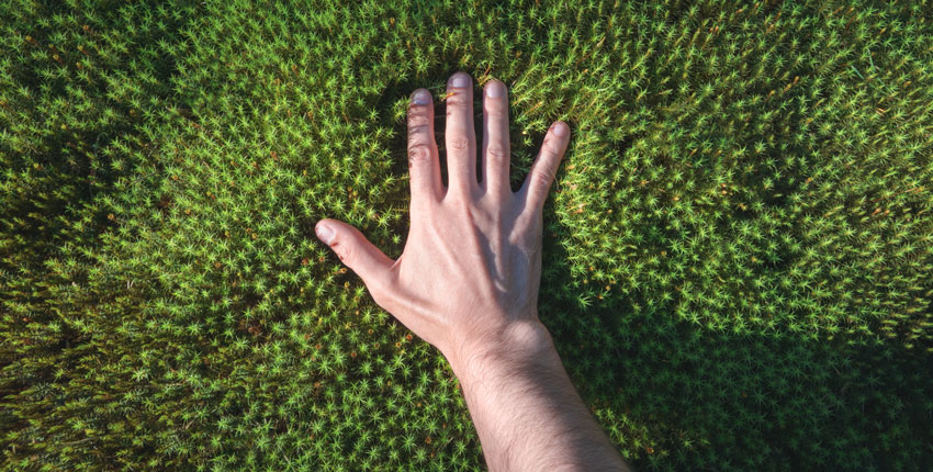 Unraveling the Mystery of Touch
