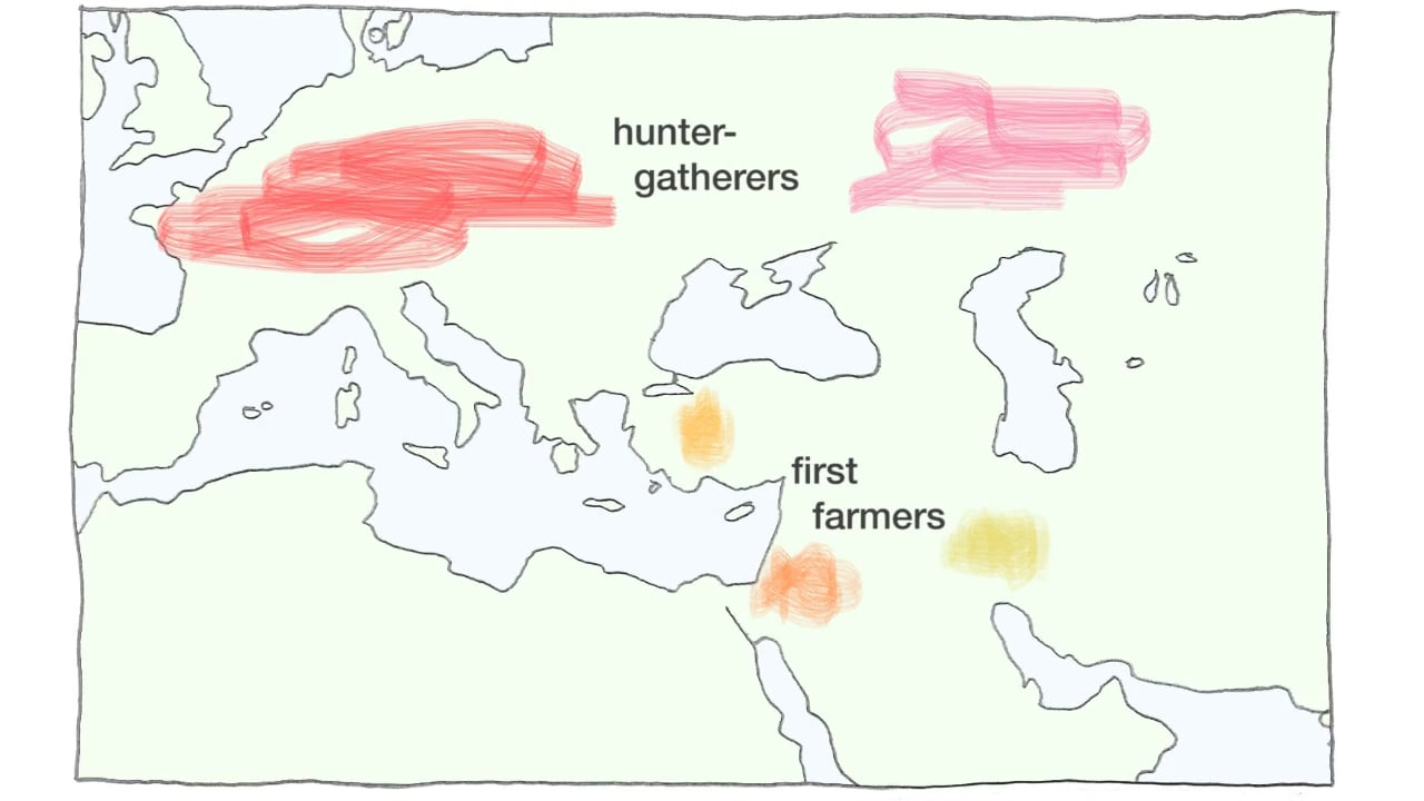 Genetic analyses reveal a collection of highly distinct groups in the Near East and Europe at the dawn of agriculture. These groups mixed and migrated to form the relatively homogeneous populations seen in the region today. Animation: Rick Groleau