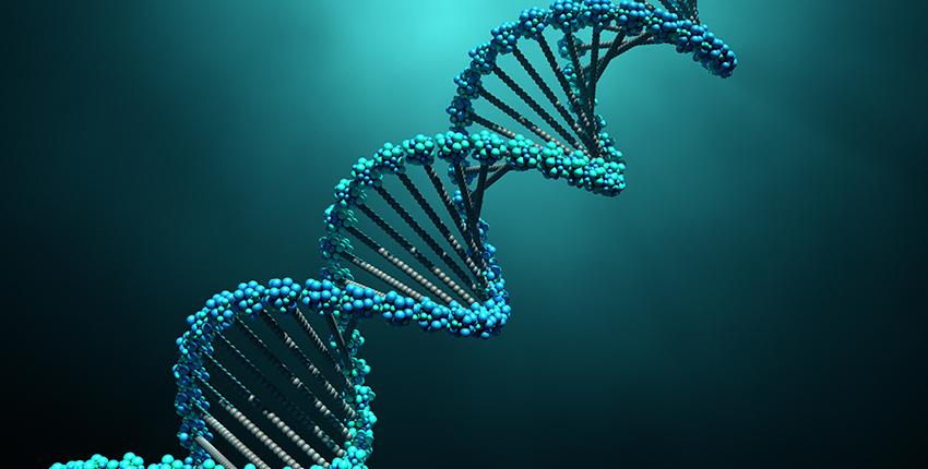 безпека ДНК