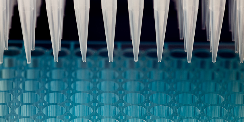 Row of pipettes over a tray of vials
