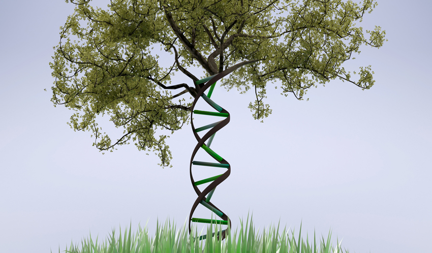 When it comes to disease and health, which is more powerful--zip code or genetic code?