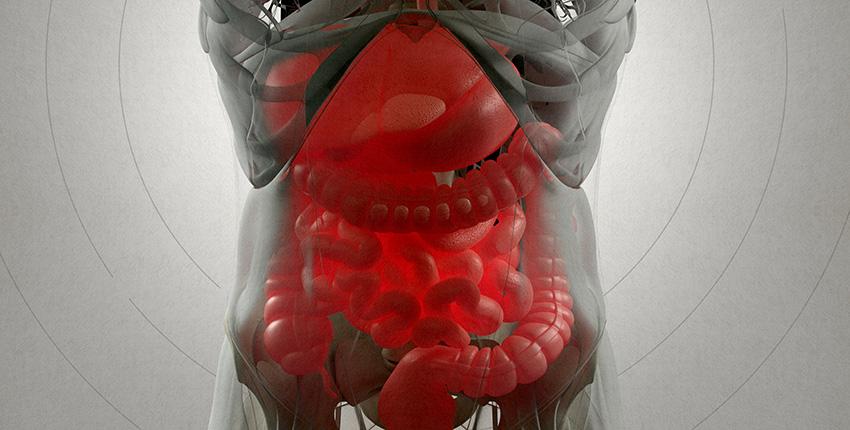 digital xray image of the gut