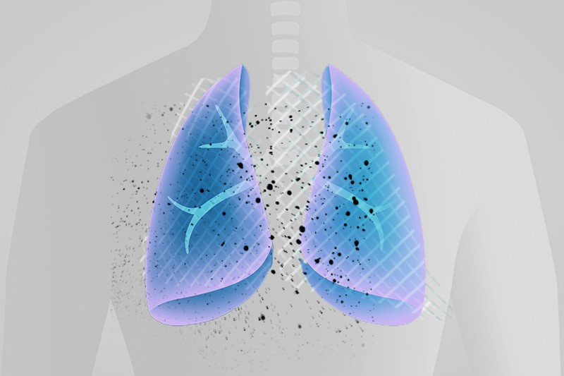 Illustration of a transparent person's torso with lungs outlined in blue and purple, and black dots scattered across the chest