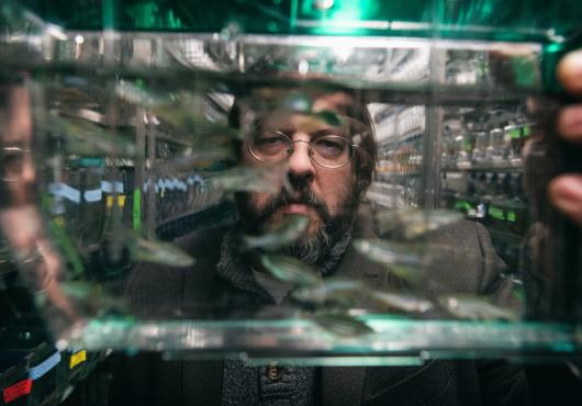 Portrait of a bearded man in glasses through a fish tank he is holding