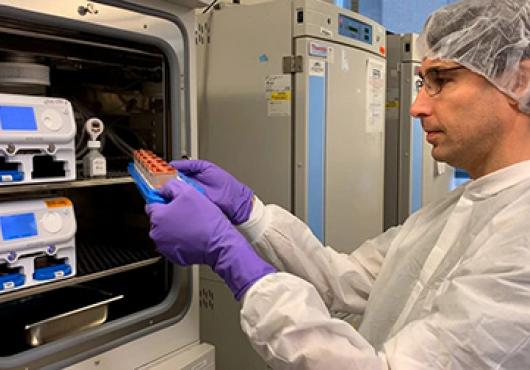 Researcher examines organ on chip