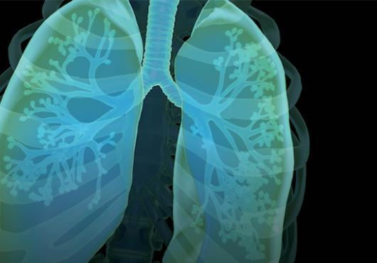 Illustration of human lungs in blue and green hues