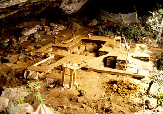 Archaeological excavation with boards set up over soil beneath a rock overhang