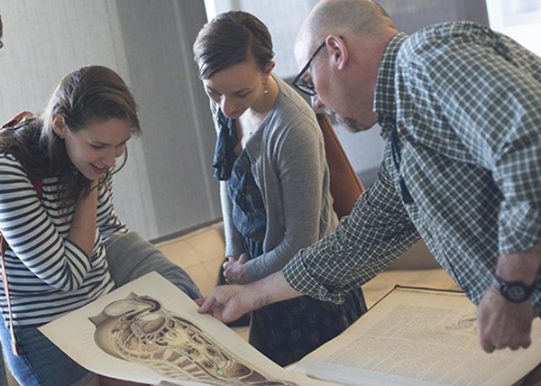 Glimpsing the Anatomical Past | Harvard Medical School